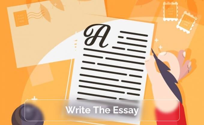 Write The Essay