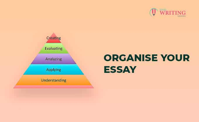 Organise Your Essay